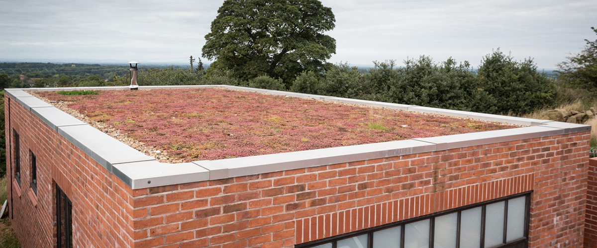 Green garden roof in Staffordshire