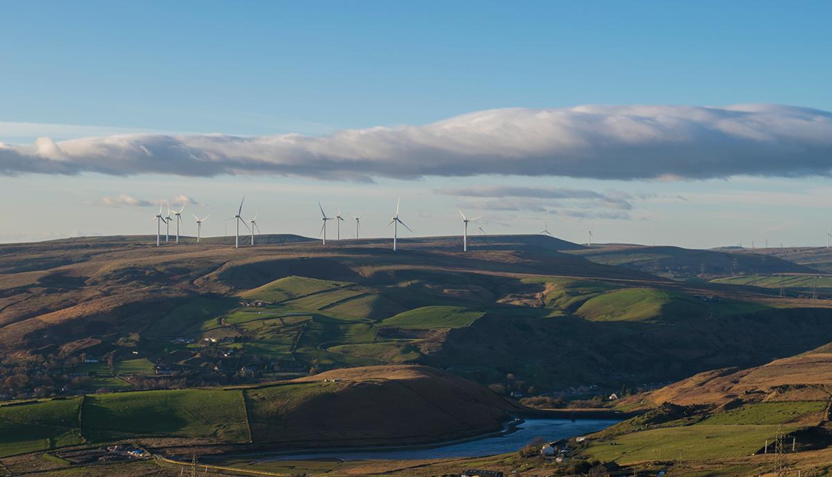 Reinstating Wind Farm Subsidies Would Cut Energy Bills