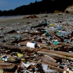 Discovery of plastic-eating enzyme welcomed