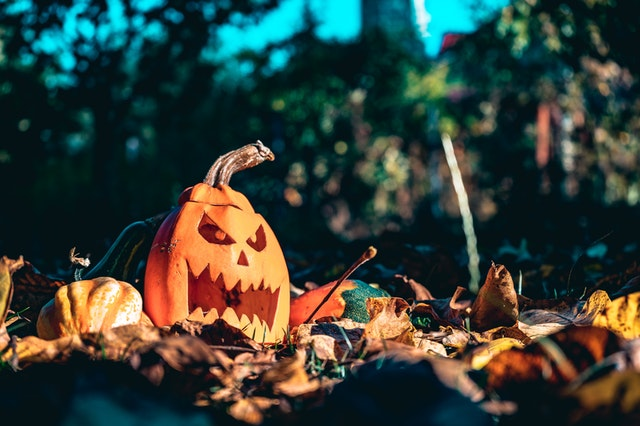 Going from orange to green – these jack-o'lanterns can be turned into renewable energy.